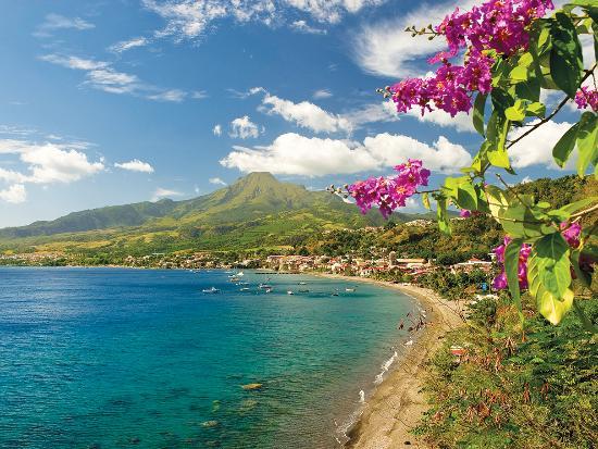 Image from Tripadvisor - Martinique